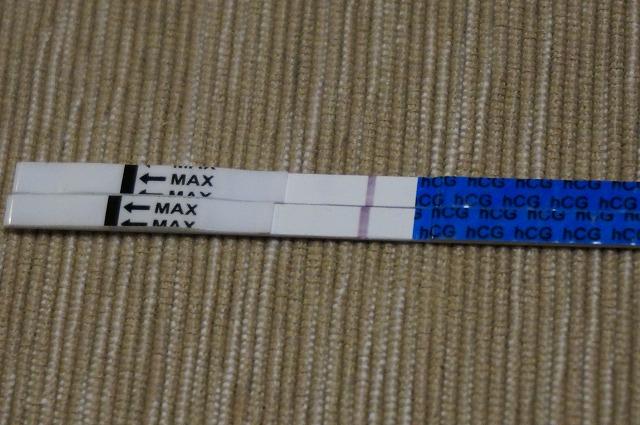 早期妊娠検査薬D24ET9高温期11日目