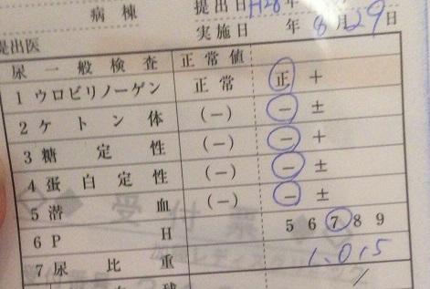 8w6d尿検査 KLC